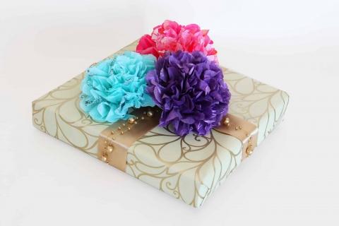 פרחי משי - כל אחד יכול